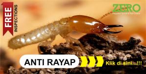 Perusahaan Anti Rayap Murah di Bogor